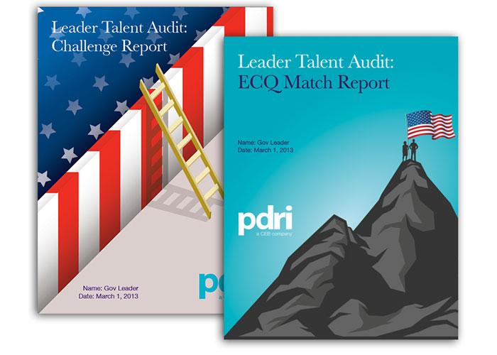 PDRI Report Cover